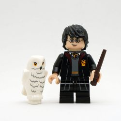Harry Potter mit Hedwig